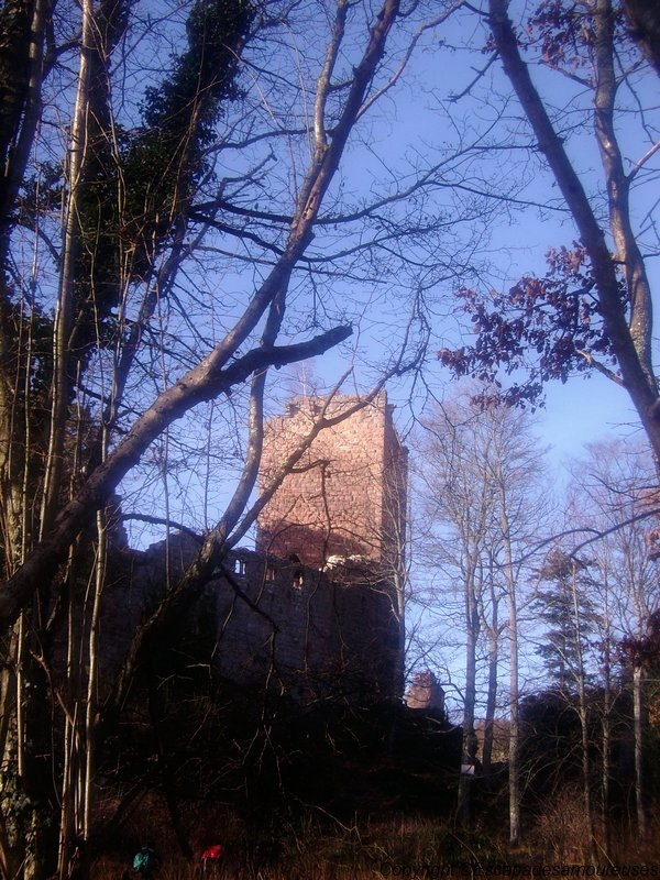 château du Kagenfels02