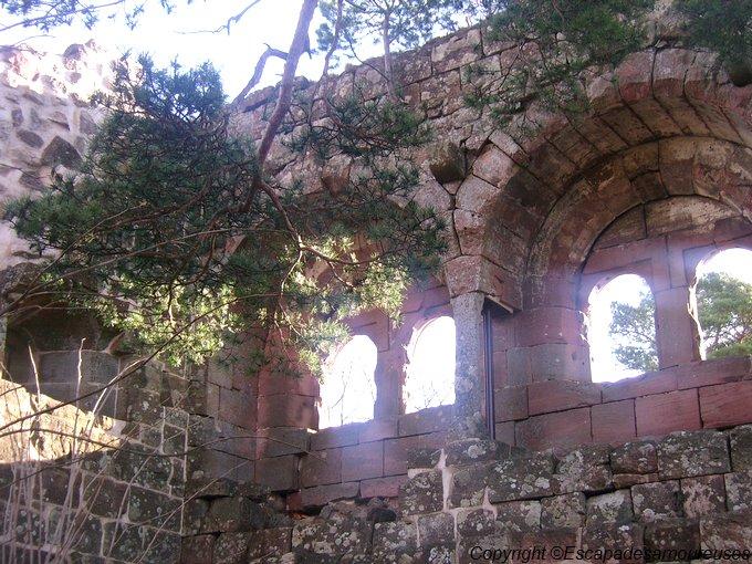 château du Kagenfels05